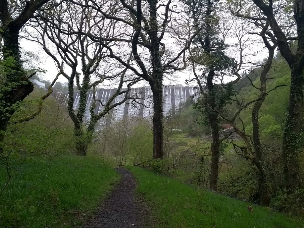 Clywedog dam seen through the trees